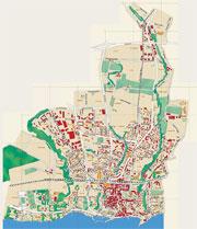 Investigating Nyon Maps